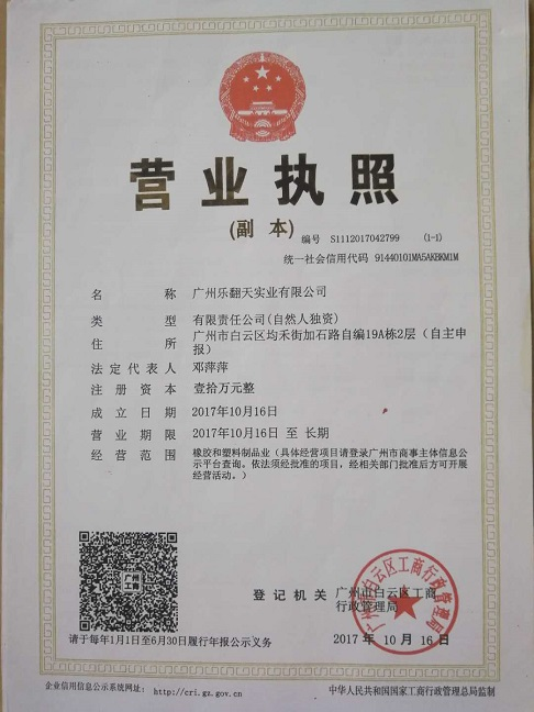 Company Busines License.jpg
