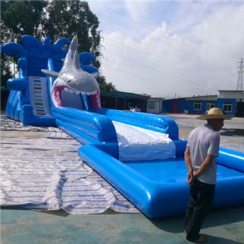 Big Shark Pool Slide Inflatable For Sale