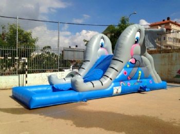 School elephant Water Slide Inflatable Isreal