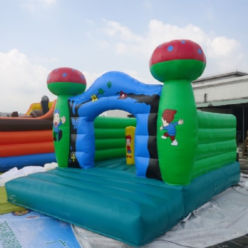 Children inflatable Jumping house